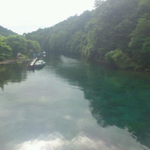 橋より見た千歳川.jpg